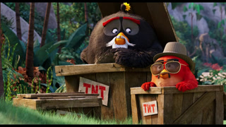 Angry Birds: De Film online kijken / downloaden