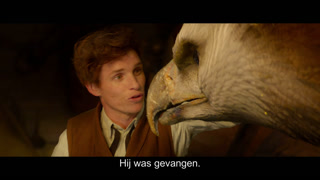 Fantastic Beasts and Where to Find Them online kijken / downloaden